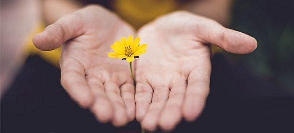 Explora el camino para poder incremen-tar tu bienestar emocional (segunda parte)